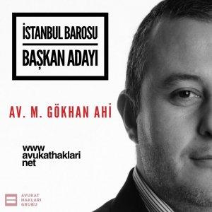 Av.M. Gökhan Ahi - Avukat Hakları