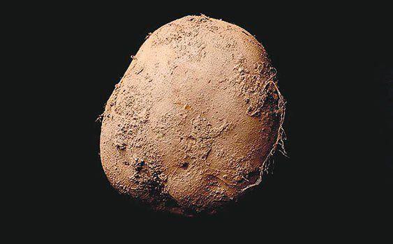 1 milyon dolarlık patates