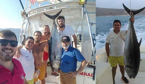 1.5 saatlik mücadeleyle tekneye çıkarılabildi