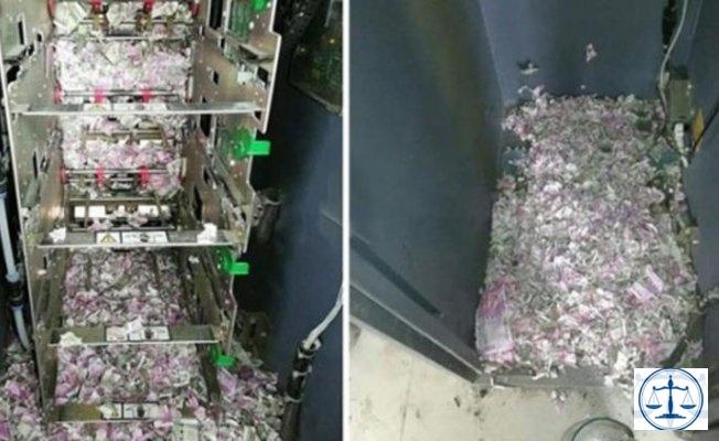 İnanılmaz olay! ATM'ye giren fareler yaklaşık 9 milyon TL'yi yedi