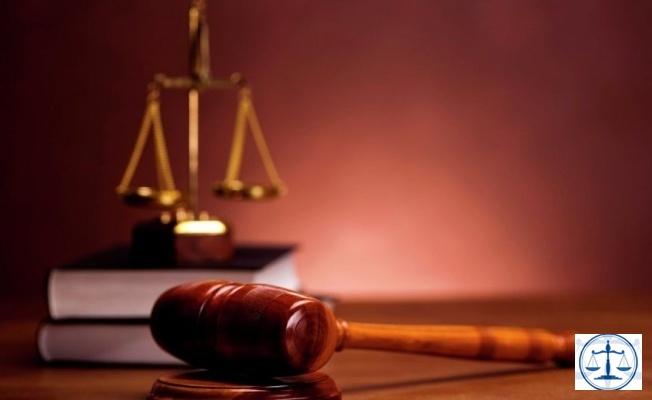 Hindistan'da bulunan bir eyalet mahkemesi, insanlarla hayvanların eşit haklara sahip olduğuna hükmetti