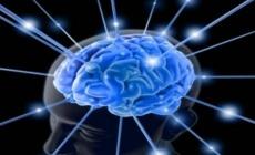 Kadın ve erkek beyinleri arasında önemli farklılıklar keşfedildi