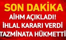 SON DAKİKA! AİHM'den Şahin Alpay ve Mehmet Altan kararı