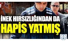 Osman Sarıgün inek hırsızı çıktı !